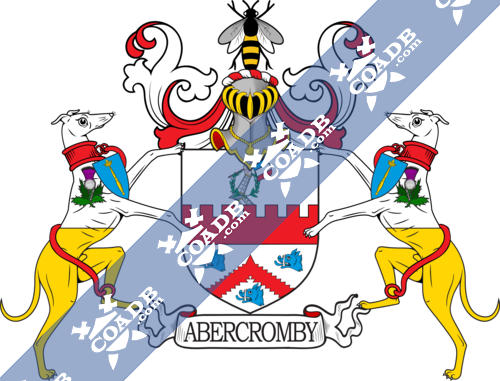 abercromby-supporters-6.png