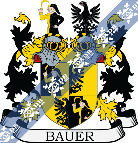bauer-twocrest-15.png