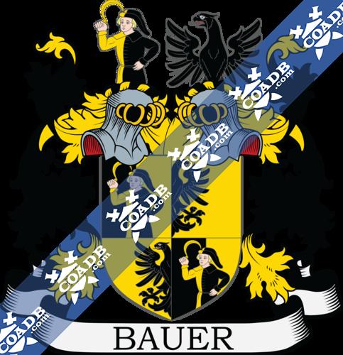 bauer-twocrest-16.png