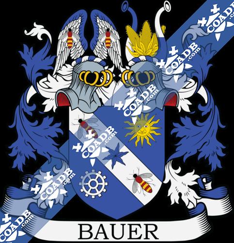 bauer-twocrest-3.png