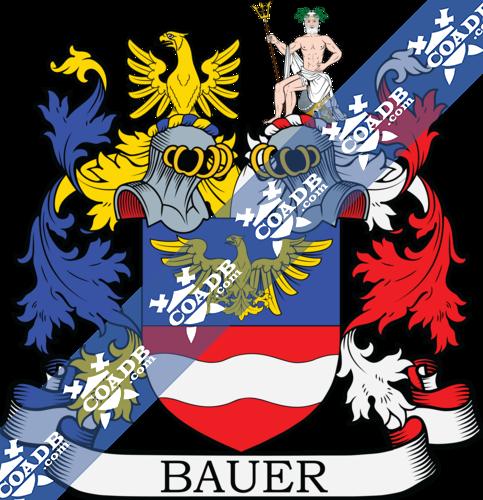 bauer-twocrest-5.png