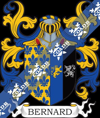bernard-nocrest-42.png