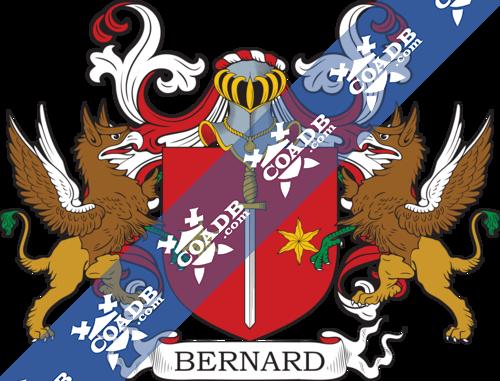 bernard-supporters-29.png