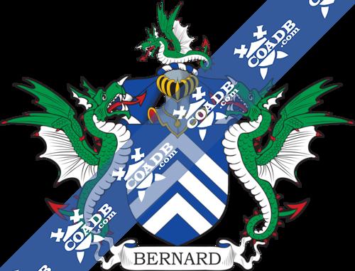 bernard-supporters-57.png