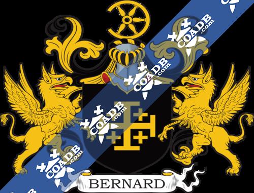 bernard-supporters-64.png