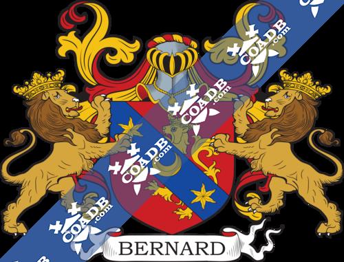 bernard-supporters-76.png
