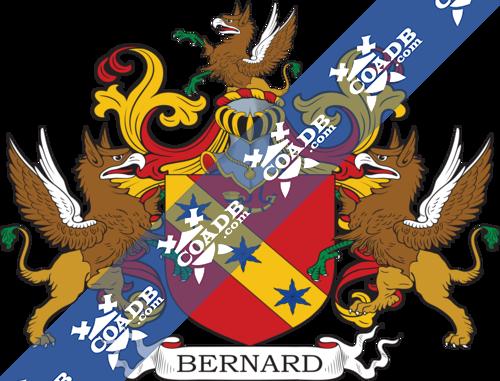 bernard-supporters-77.png