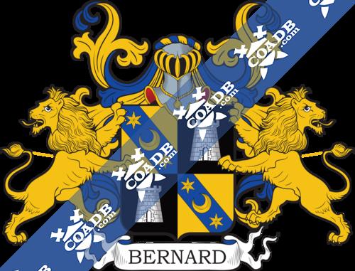 bernard-supporters-82.png