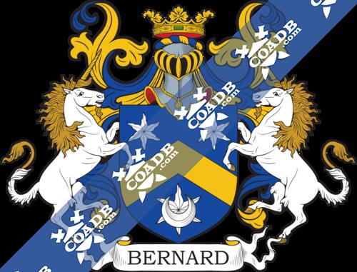 bernard-supporters-86.png