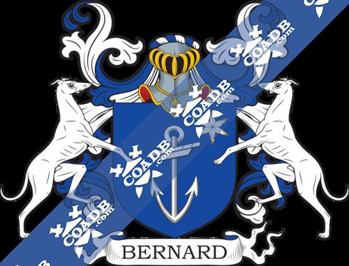 bernard-supporters-88.png