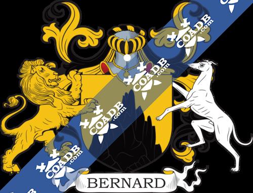 bernard-supporters-91.png
