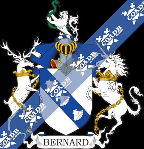 bernard-twocrest-31.png