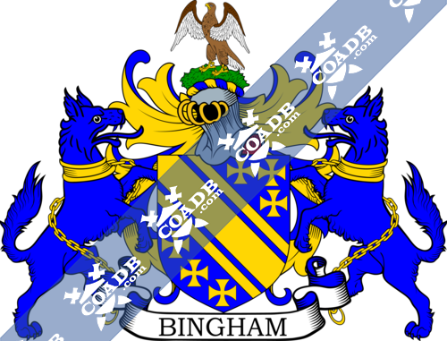 bingham-supporters-3.png