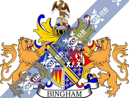 bingham-supporters-4.png