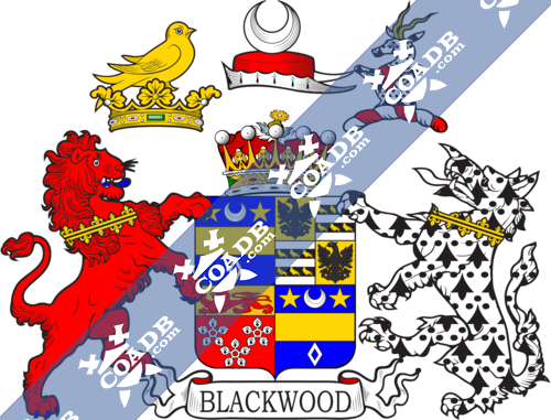 blackwood-supporters-2.png