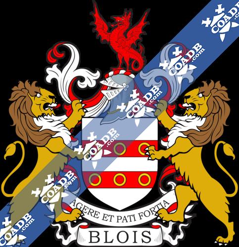 blois-twocrest-10.png