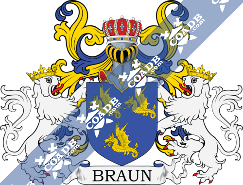 braun-supporters-1.png