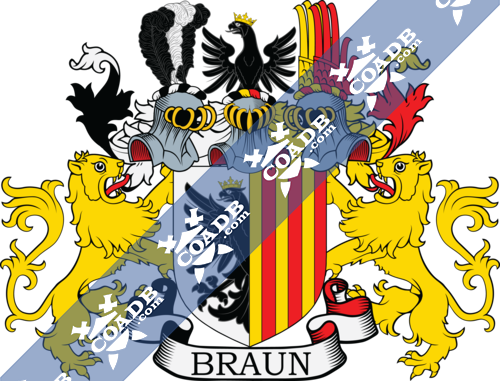 braun-supporters-8.png