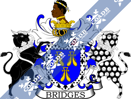 bridges-supporters-1.png