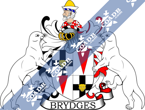 bridges-supporters-13.png