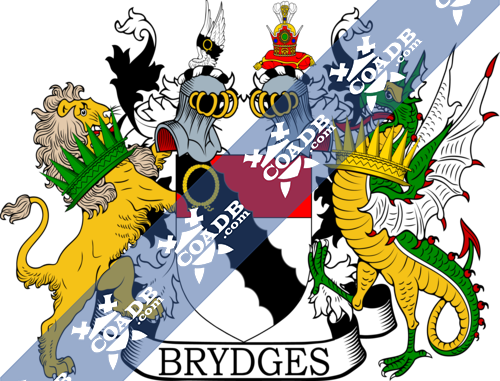 bridges-supporters-16.png