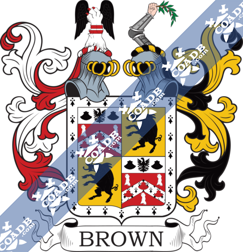 brown-twocrest-42.png