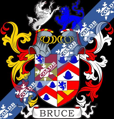 bruce-twocrest-1.png