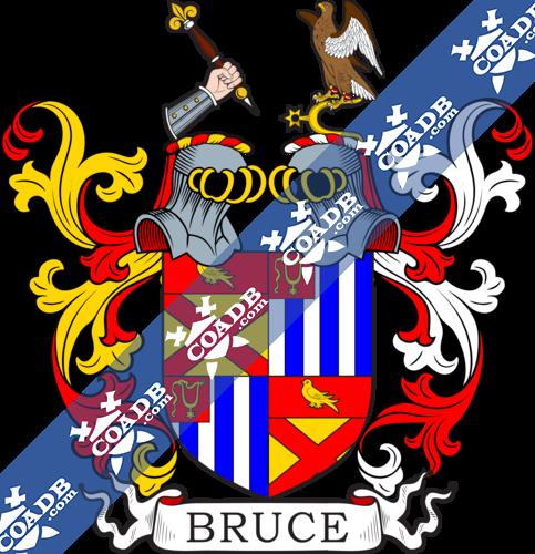 bruce-twocrest-22.png