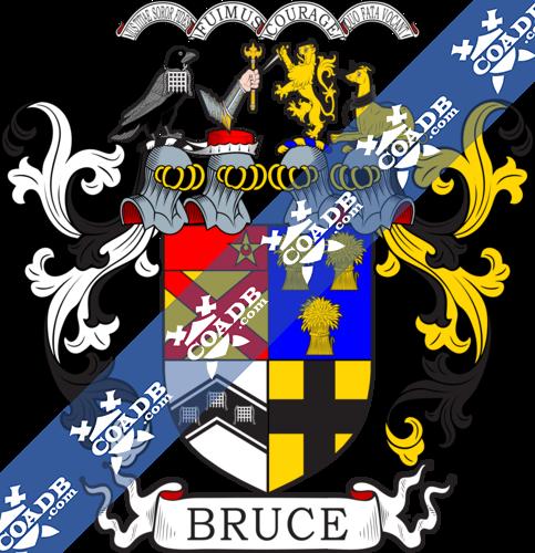 bruce-twocrest-4.png