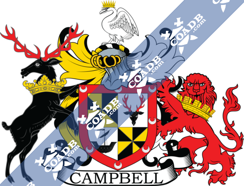 campbell-supporters-9.png