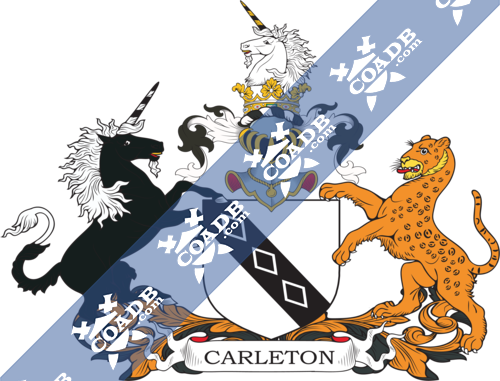 carleton-supporters-1.png