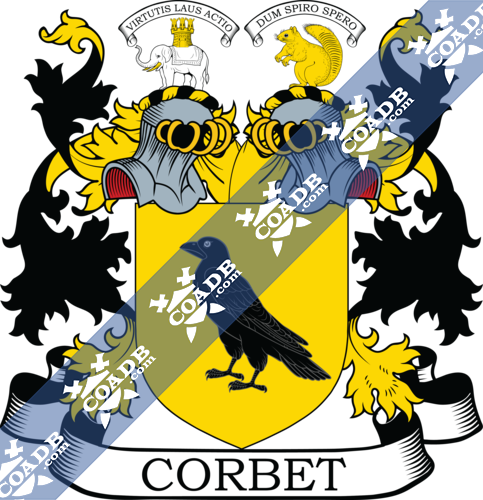 corbet-twocrest-3.png