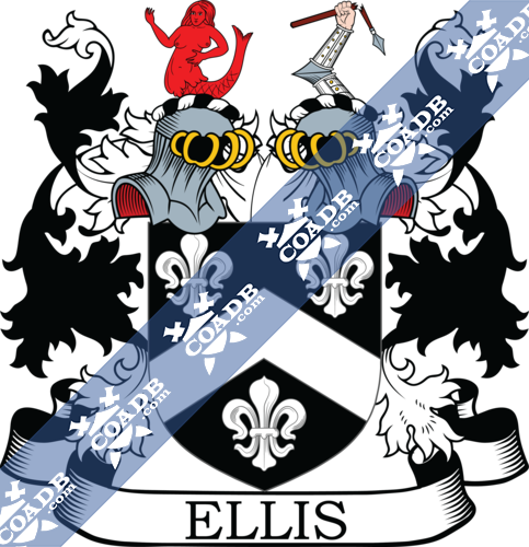 ellis-twocrest-26.png