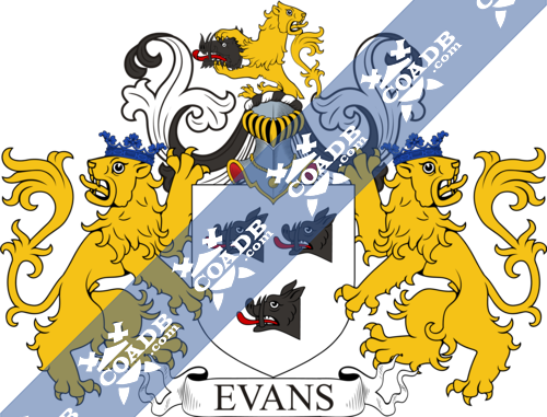 evans-supporters-29.png