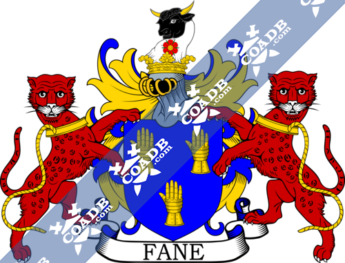 fane-supporters-2.png