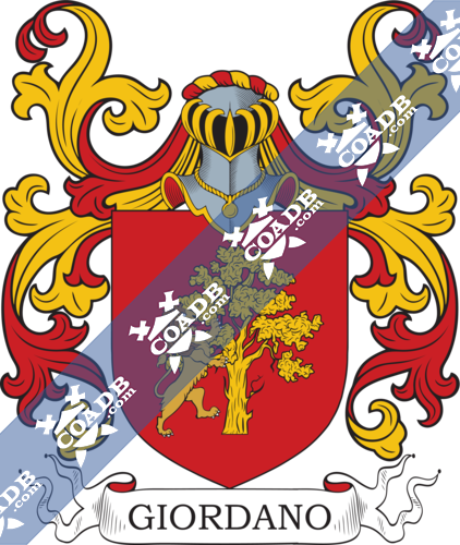 giordano-nocrest-3.png