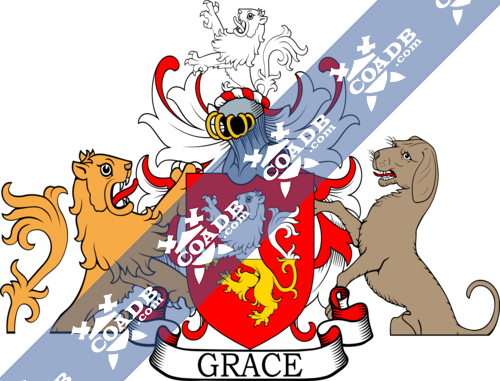grace-supporters-1.png