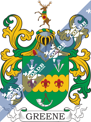 green-withcrest-56.png
