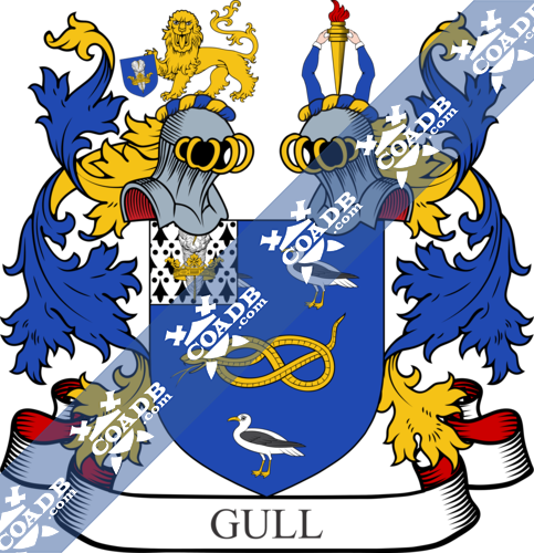 gull-twocrest-1.png