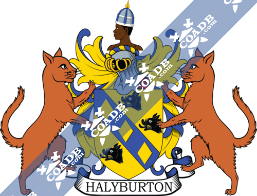 halyburton-supporters-3.png