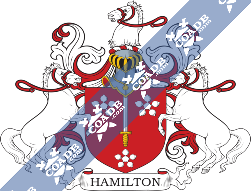 hamilton-supporters-11.png