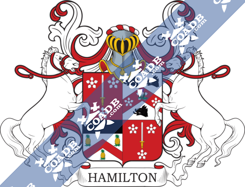 hamilton-supporters-27.png