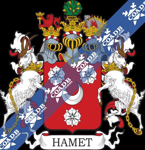 hammet-twocrest-2.png