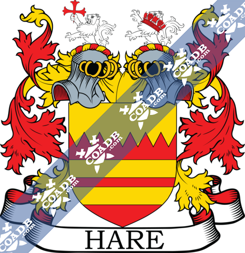 hare-twocrest-5.png