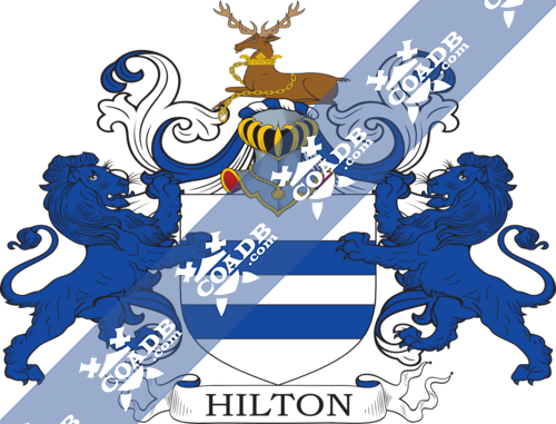 hilton-supporters-1.png