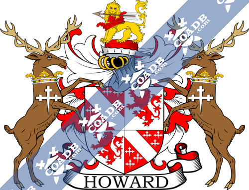 howard-supporters-11.png
