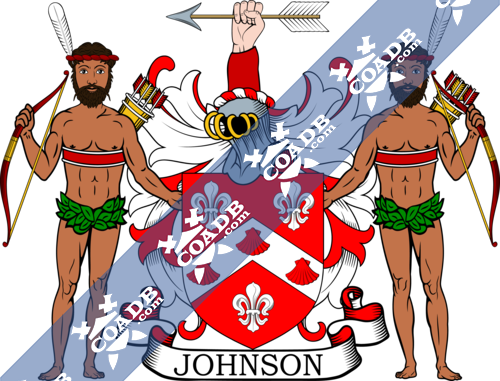 johnson-supporters-1.png