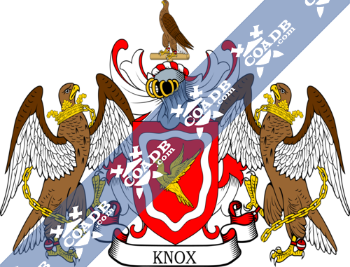 knox-supporters-5.png