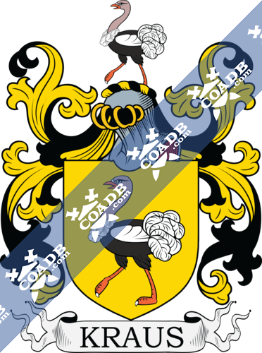krause-withcrest-17.png