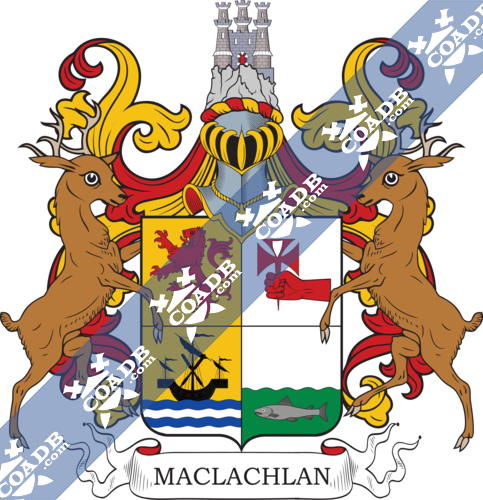 macloughlin-twocrest-5.png